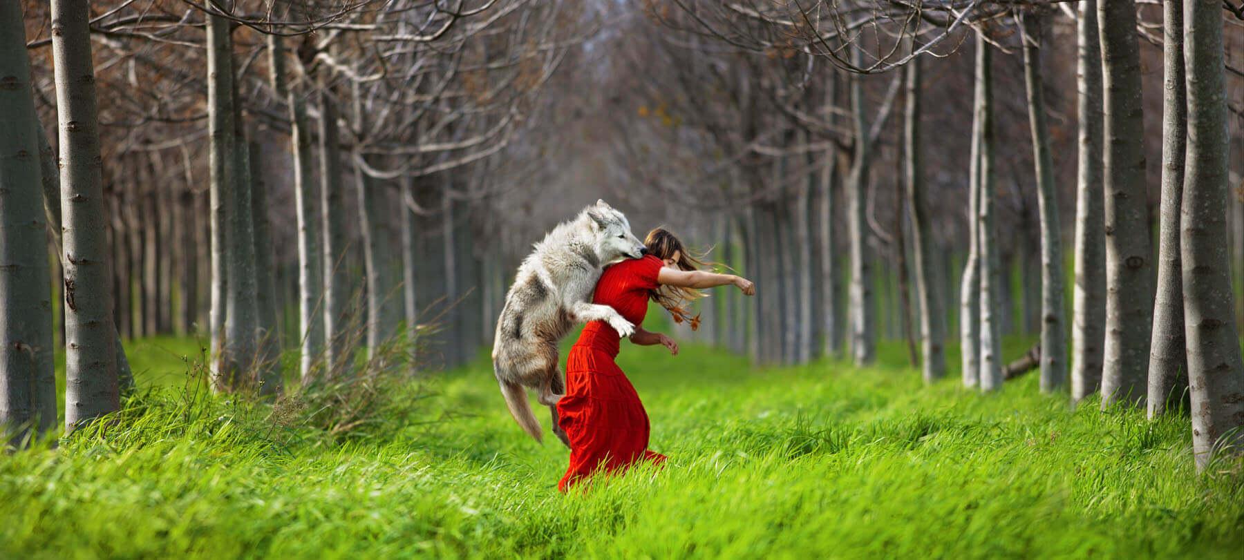 Little Red Riding Hood - SN - Eden Gallery