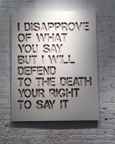 I disapprove of what you say